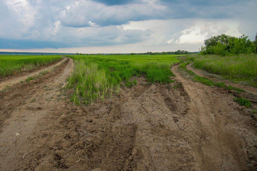 """""""Hektar gratis"""" kedua untuk warga - petani Swiss"""