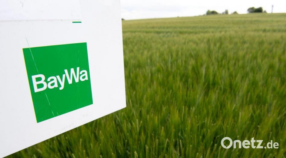 Al Baywa bergantung pada ledakan listrik hijau    Onetz