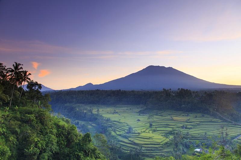 Bali menunda pembukaannya untuk wisatawan karena meningkatnya jumlah korban cedera