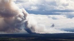 Kebakaran hutan Alaska (@imago/imagebroker)
